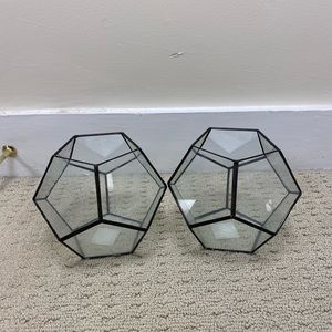 Two geometric plant terrariums